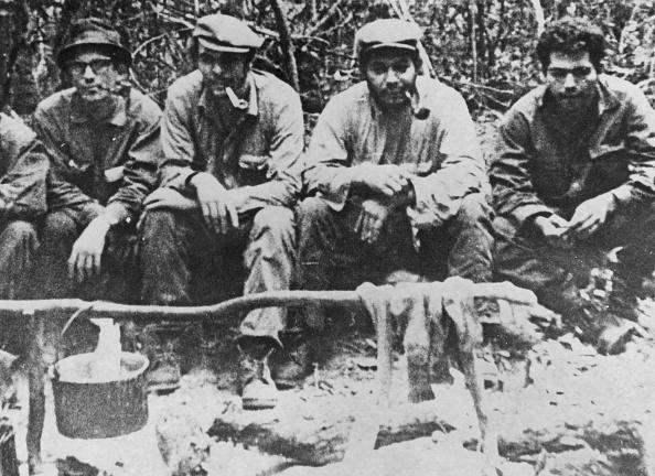 Tropical Rainforest「Guevara In Bolivia」:写真・画像(12)[壁紙.com]