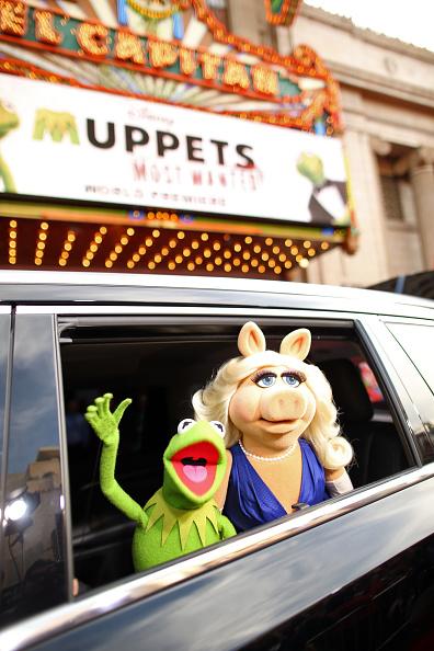 "El Capitan Theatre「World Premiere Of Disney's ""Muppets Most Wanted"" - Red Carpet」:写真・画像(8)[壁紙.com]"