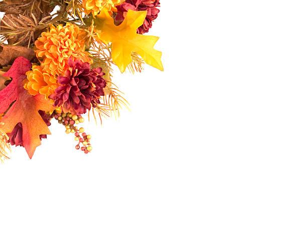 Arrangement of autumn flowers and leaves displayed on white:スマホ壁紙(壁紙.com)