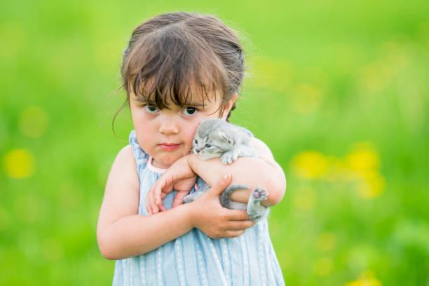 キティの抱擁:スマホ壁紙(壁紙.com)