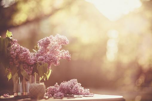 Gardening「Spring lilac flowers」:スマホ壁紙(0)