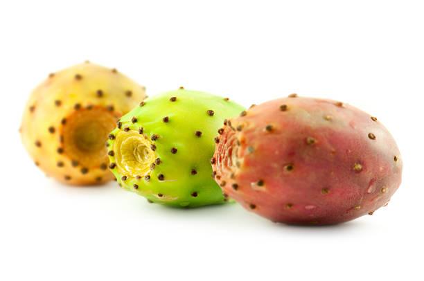 cactus pears:スマホ壁紙(壁紙.com)