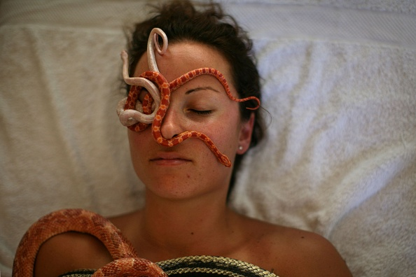 Spa「Ada Barak's Carnivorous Plant Farm Offers Snake Massage」:写真・画像(7)[壁紙.com]