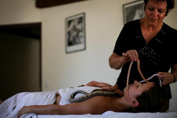 Spa「Ada Barak's Carnivorous Plant Farm Offers Snake Massage」:写真・画像(9)[壁紙.com]