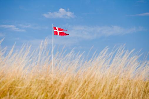 Helsingor「Danish flag」:スマホ壁紙(7)