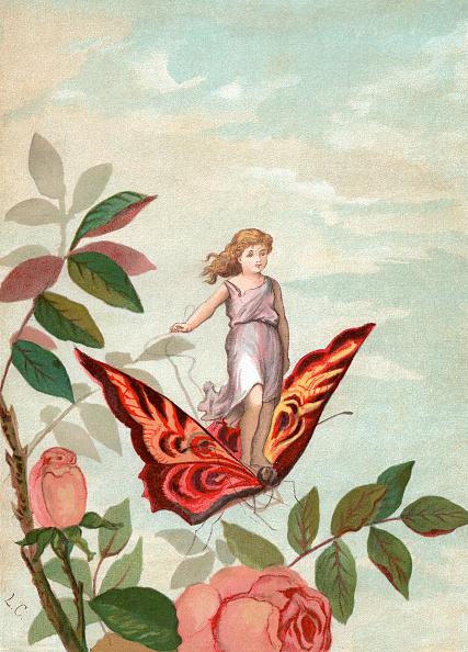 Fairy「Fairy Riding A Butterfly」:写真・画像(0)[壁紙.com]