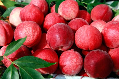 桃「Peach」:スマホ壁紙(6)