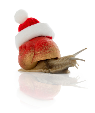 snails「Christmassnail」:スマホ壁紙(7)