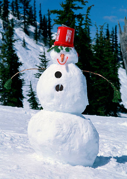 Snowman:スマホ壁紙(壁紙.com)