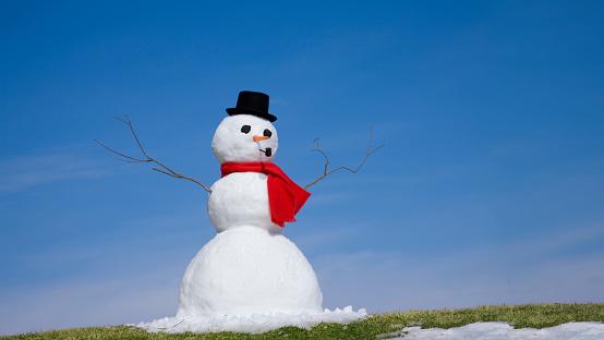 雪だるま「スノーマン」:スマホ壁紙(15)