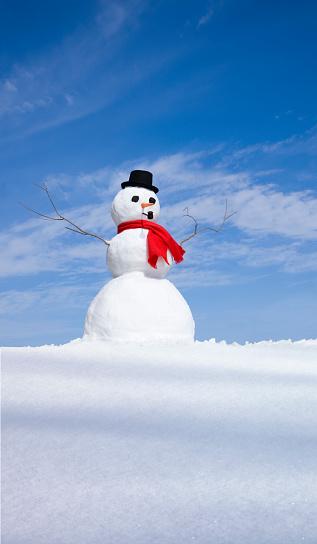 雪だるま「スノーマン」:スマホ壁紙(10)
