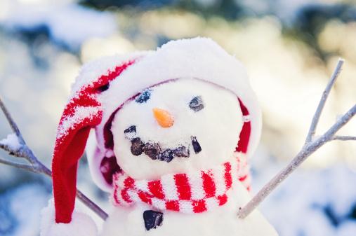 雪だるま「かわいいスノーマン」:スマホ壁紙(7)