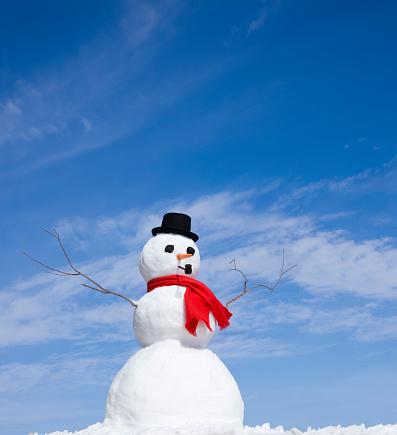 雪だるま「スノーマン」:スマホ壁紙(18)