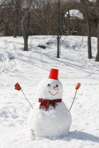 雪だるま「A snowman」:スマホ壁紙(16)