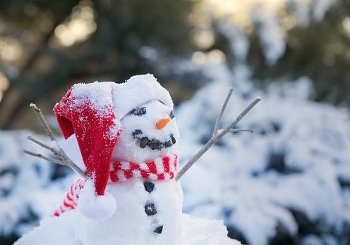 雪だるま「スノーマン」:スマホ壁紙(9)
