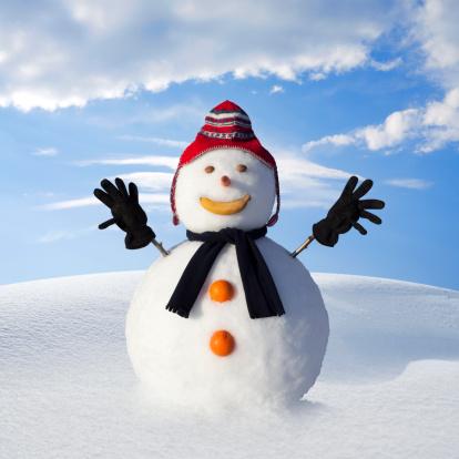 Frost「Snowman」:スマホ壁紙(18)