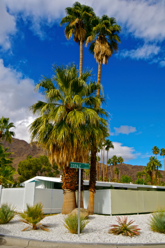 20th Century Style「Mountains, plants & Mid-Century home in Palm Springs, California」:スマホ壁紙(19)