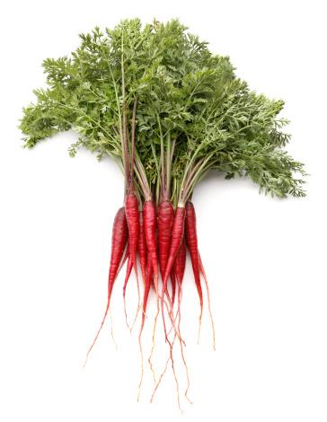 Carrot「Purple Dragon Carrots」:スマホ壁紙(6)