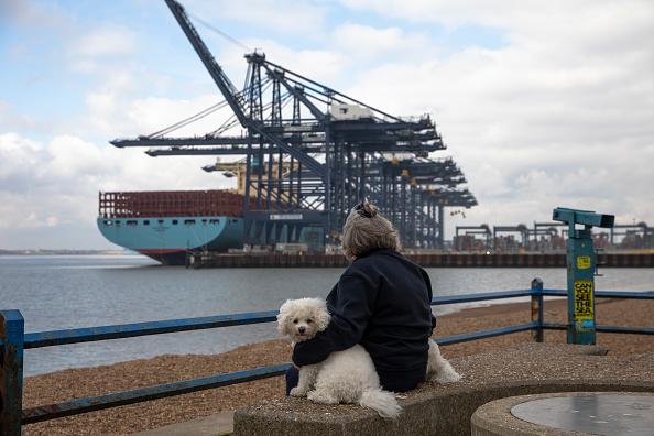 座る「General Views Of The Container Terminal At Felixtowe Port」:写真・画像(2)[壁紙.com]