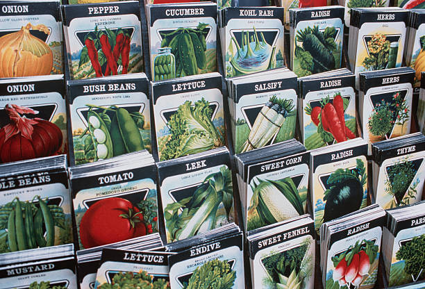 Seed Packets:スマホ壁紙(壁紙.com)