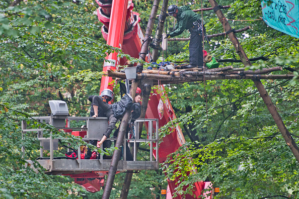Environmental Conservation「Police To Evict Protesters In Hambach Forest Coal Mine Standoff」:写真・画像(14)[壁紙.com]