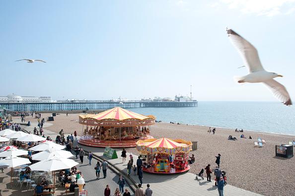 Aquatic Organism「Sea Front at Brighton」:写真・画像(17)[壁紙.com]