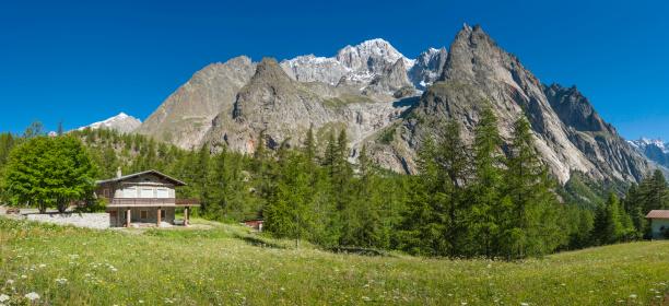 Chalet「Alpine chalet in wildflower meadow under mountain peaks panorama」:スマホ壁紙(18)