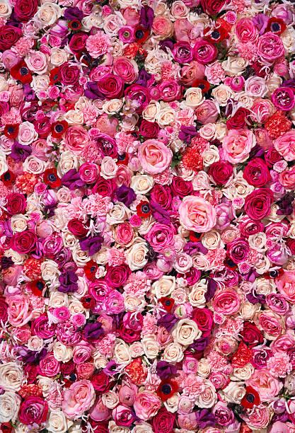 Bed of Flowers:スマホ壁紙(壁紙.com)