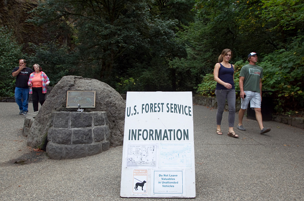 Wilderness Area「US Forest Service Considers Restricting Photography Within Federally Designated Wilderness Areas」:写真・画像(17)[壁紙.com]