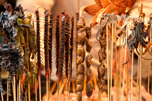 Dim Sum「Various cooked insects thread on skewers」:スマホ壁紙(10)