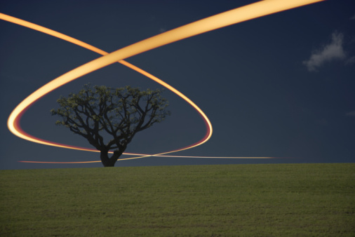 Light Trail「Light Trails Around Tree」:スマホ壁紙(3)
