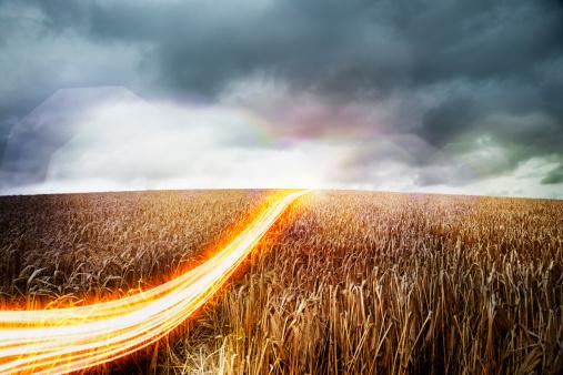 Light Trail「Light trails moving across wheat field.」:スマホ壁紙(3)