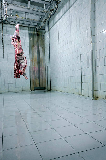 A meat carcass hangs upside down from a hook in a white room:スマホ壁紙(壁紙.com)