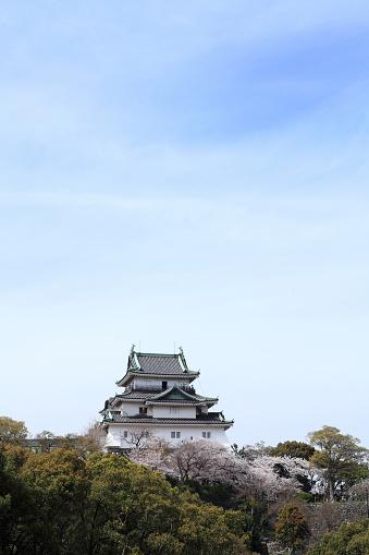 Grove「Wakayama Castle」:スマホ壁紙(5)