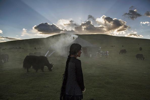 Tibet「Tibetan Nomadic Culture Faces Challenges On The Tibetan Plateau」:写真・画像(4)[壁紙.com]