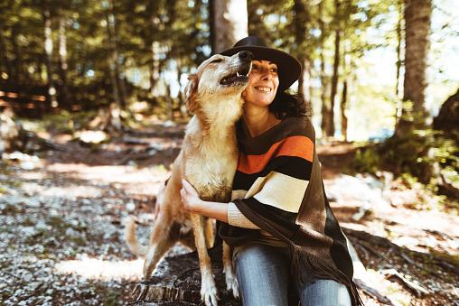 Dog「山で犬と遊ぶ女性」:スマホ壁紙(2)