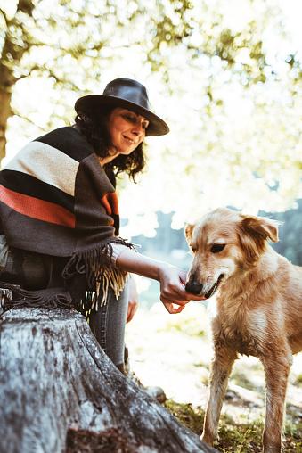 動物・ペット「山で犬と遊ぶ女性」:スマホ壁紙(8)