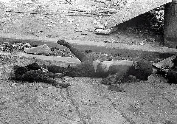 Showa Period「Bombing Of Tokyo」:写真・画像(9)[壁紙.com]