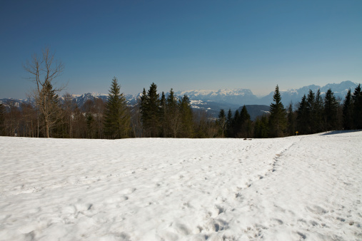 Central Eastern Alps「In a woody clearing, snowy footprints lead away.」:スマホ壁紙(19)