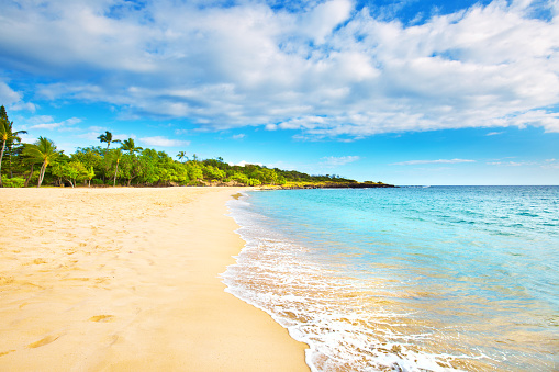 Bay of Water「Hulopoe Beach of Lanai Island in Hawaii」:スマホ壁紙(0)