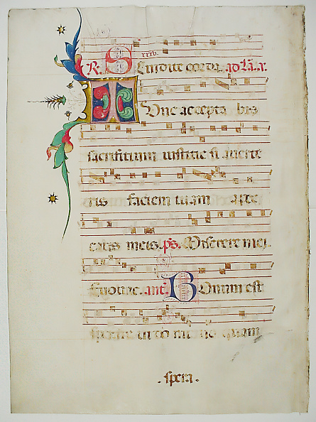 T 「Manuscript Leaf With Initial T」:写真・画像(2)[壁紙.com]