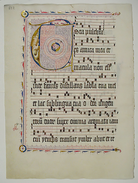 T 「Manuscript Leaf With Initial T」:写真・画像(14)[壁紙.com]