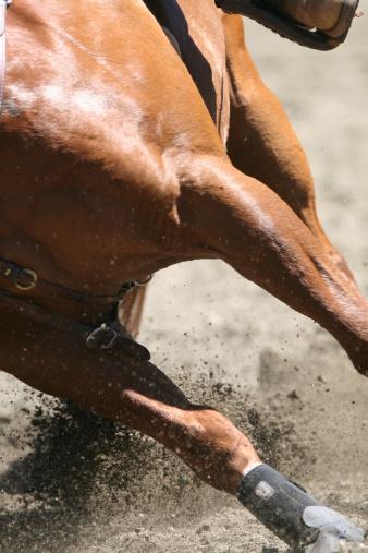 Horse「Dirt Flying」:スマホ壁紙(10)
