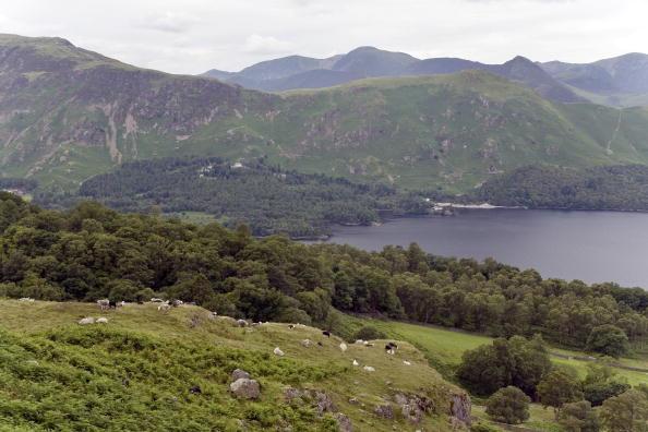 Derwent Water「Lake Derwentwater, Lake District, England」:写真・画像(15)[壁紙.com]