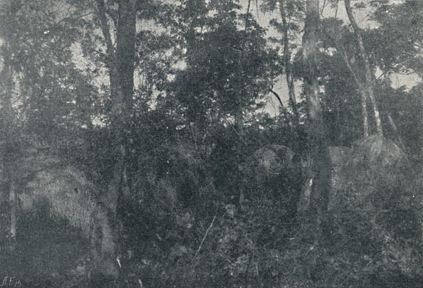 Hiding「Cabanas De Indios 1895」:写真・画像(9)[壁紙.com]