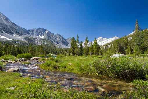インヨー国有林「One of several glacial lakes along stream in Little Lakes Valley near Bishop and Mammoth Lakes, Little Lakes Valley, California, USA」:スマホ壁紙(19)