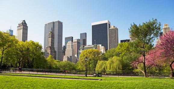 マンハッタン セントラルパーク「Buildings and trees, New York, United States」:スマホ壁紙(19)