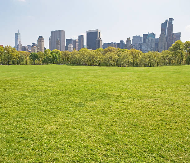 Buildings around Sheep?s Meadow, New York, United States:スマホ壁紙(壁紙.com)