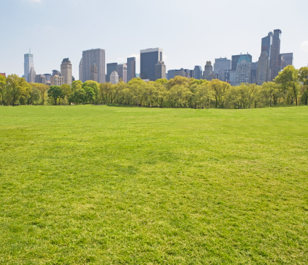 公園「Buildings around Sheep?s Meadow, New York, United States」:スマホ壁紙(6)