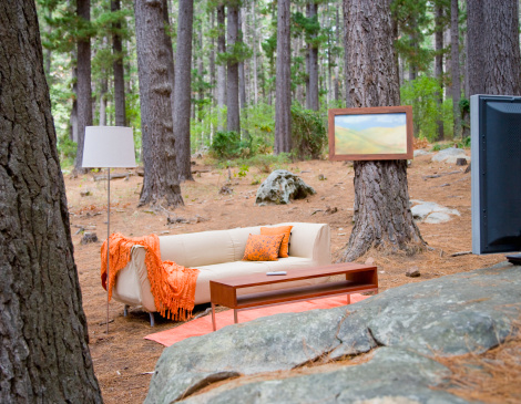 Tree「Home furnishings in the middle of the woods」:スマホ壁紙(9)